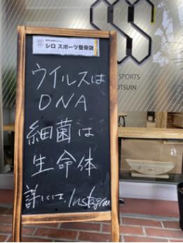ウイルスはDNA、細菌は生命体